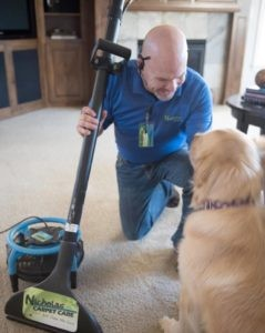 carpet cleaning Lake Oswego or