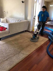 carpet cleaning Beaverton