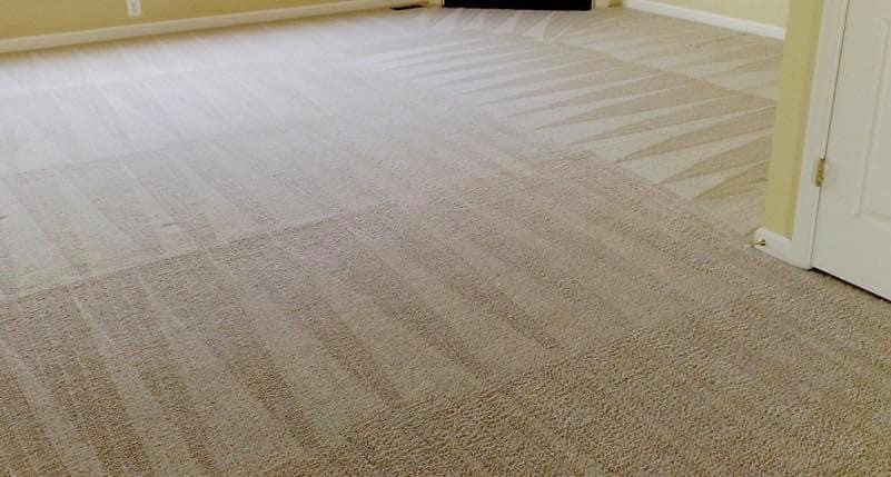 lake oswego carpet cleaning services